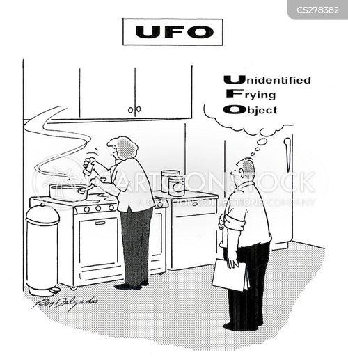 fried cartoon