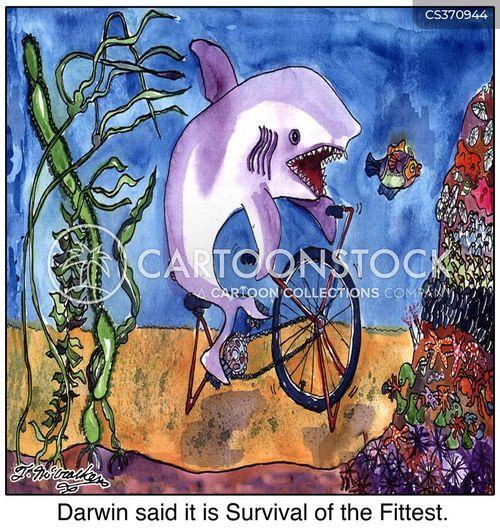 fish on a bicycle cartoon