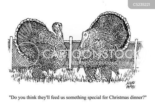 christmas turkey cartoon