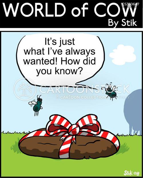 perfect gift cartoon