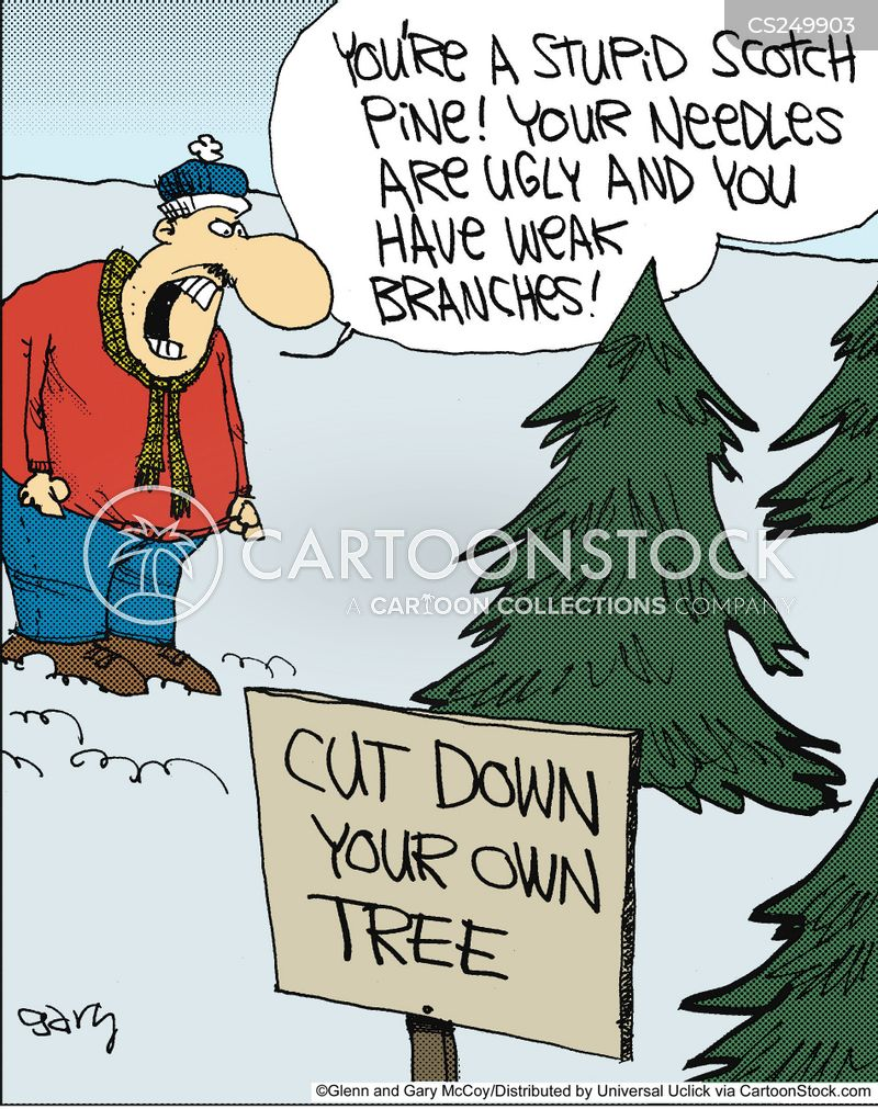 Pine Trees Cartoon 3 Of 16