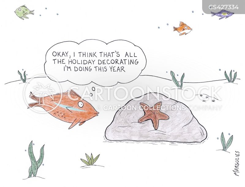 star fish cartoon