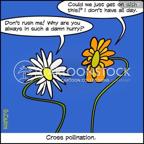 fertilization cartoon