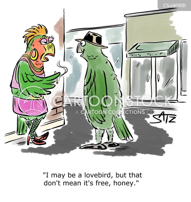 lovebirds cartoon