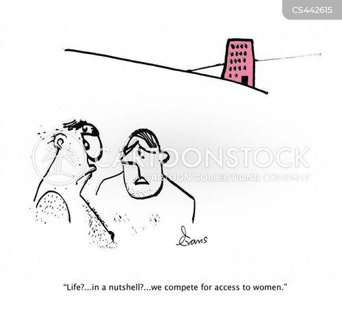 social hierarchy cartoon