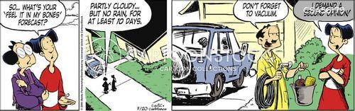 wash the car cartoon