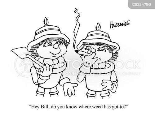 bill and ben cartoon