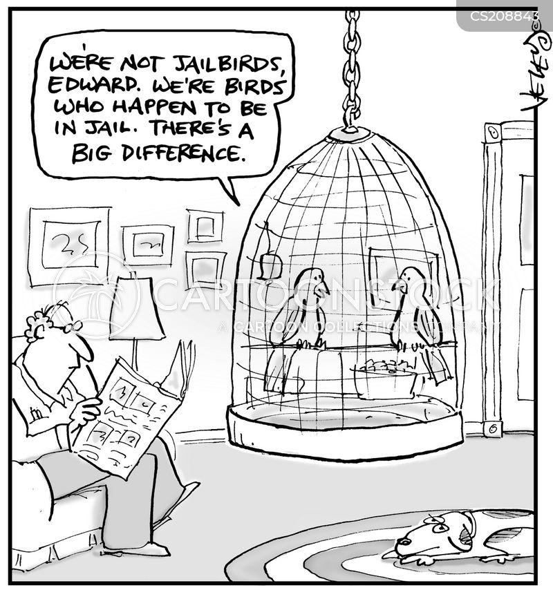 jailbird cartoon