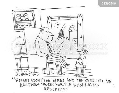 washington redskins cartoon