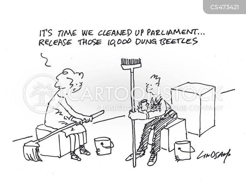 clean-ups cartoon