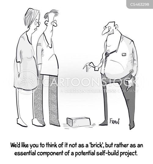 self-build cartoon