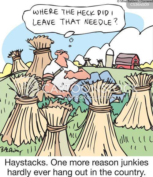 needle in a haystack cartoon