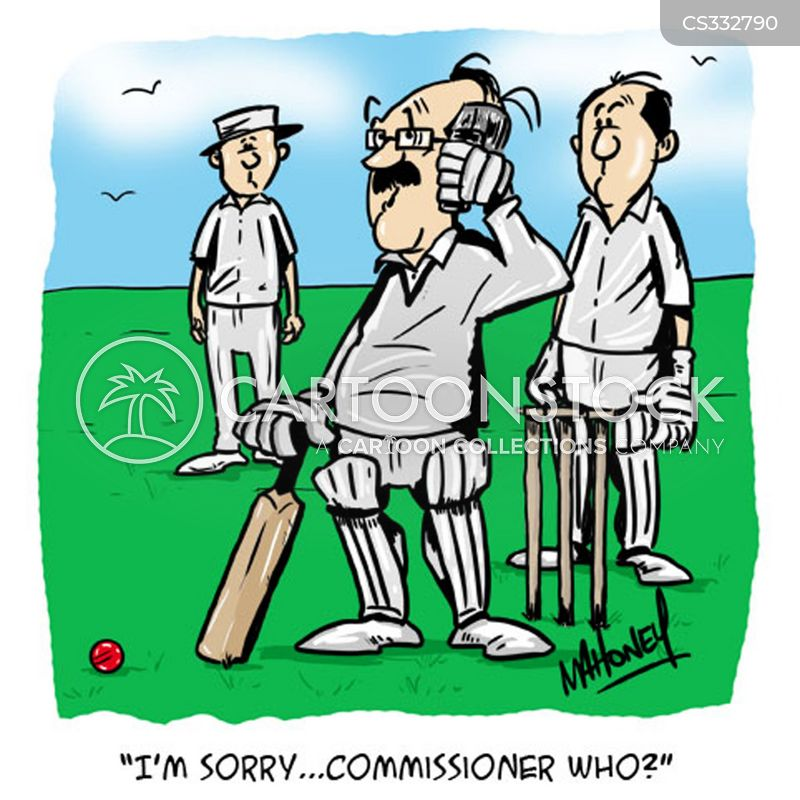 cricket games cartoon