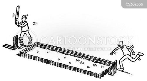 miniature cricket pitch cartoon
