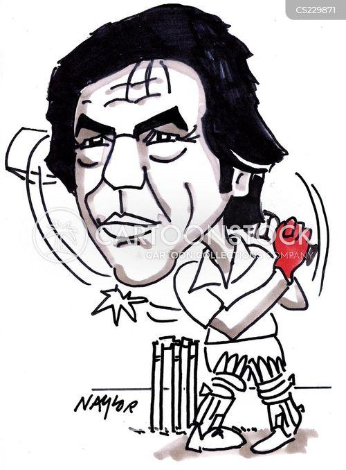 wickets cartoon