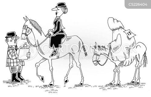 horse show cartoon