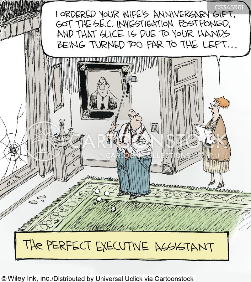 perfections cartoon