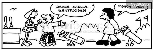 birdies cartoon