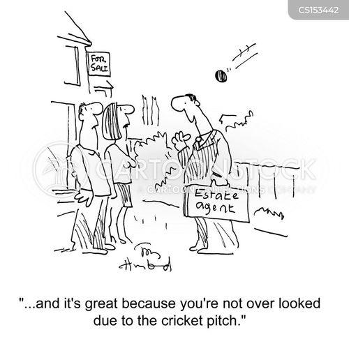 cricket pitch cartoon