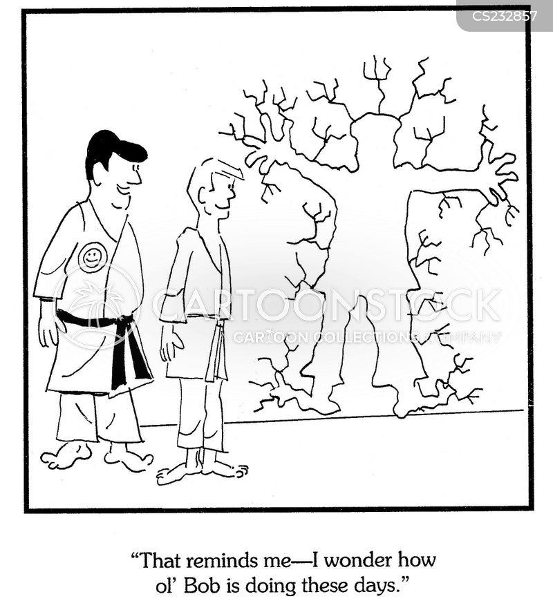 martial arts teacher cartoon