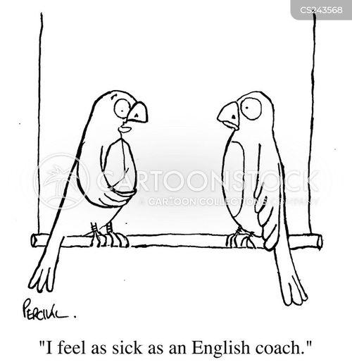 england coach cartoon