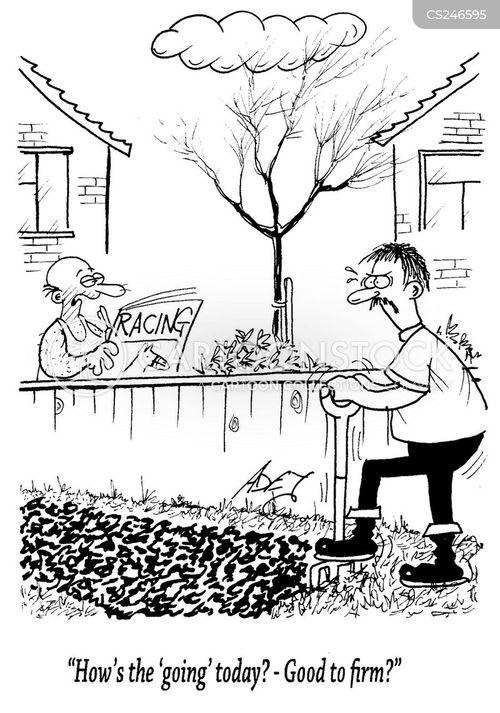 bookmakers cartoon