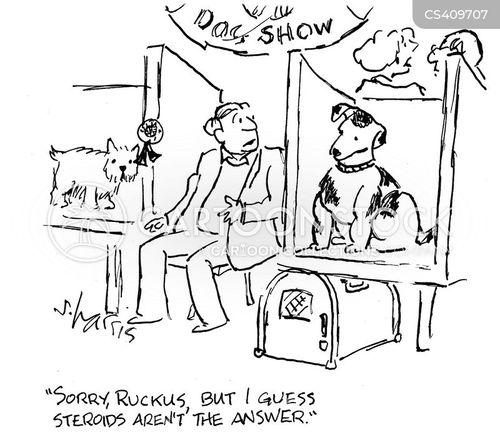 dog shows cartoon