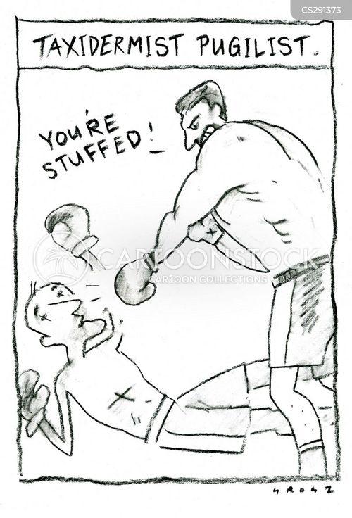 knock-out cartoon