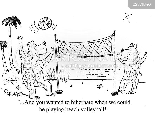 beach volleyball cartoon