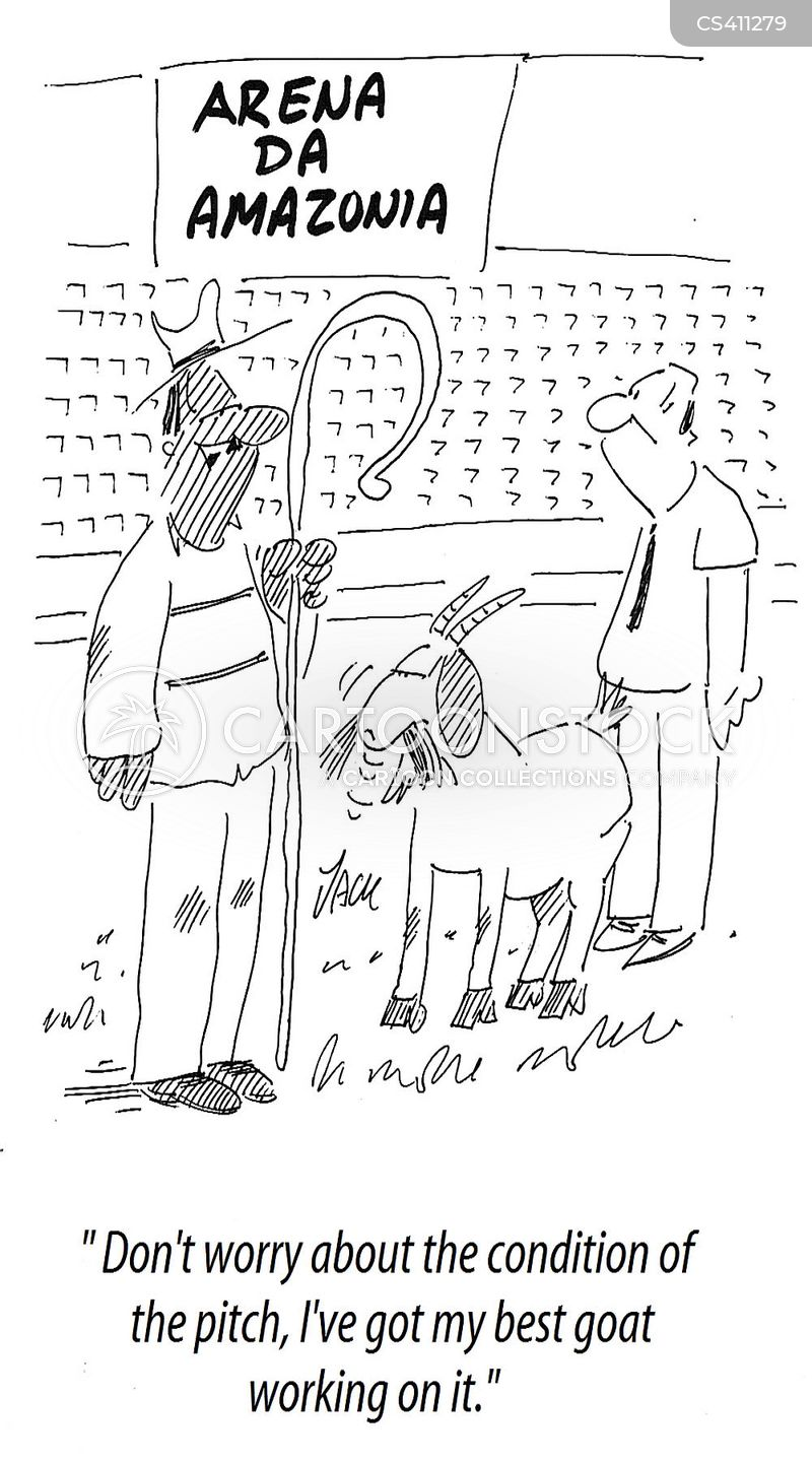 football stadiums cartoon