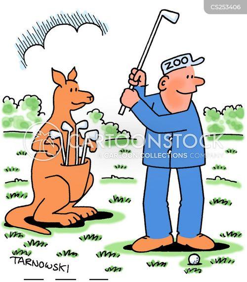 kangaroo pouches cartoon