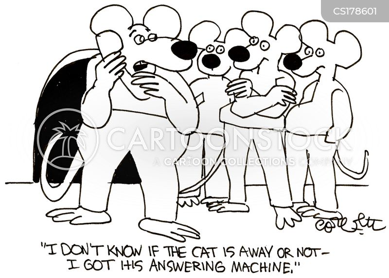 Kitty cartoons and comics funny pictures from cartoonstock kitty cartoon 11 of 371 voltagebd Choice Image