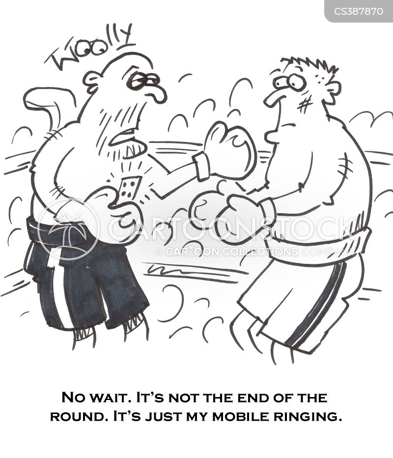Not Now Silly Watergate The End Of The End: Combat Sport Cartoons And Comics