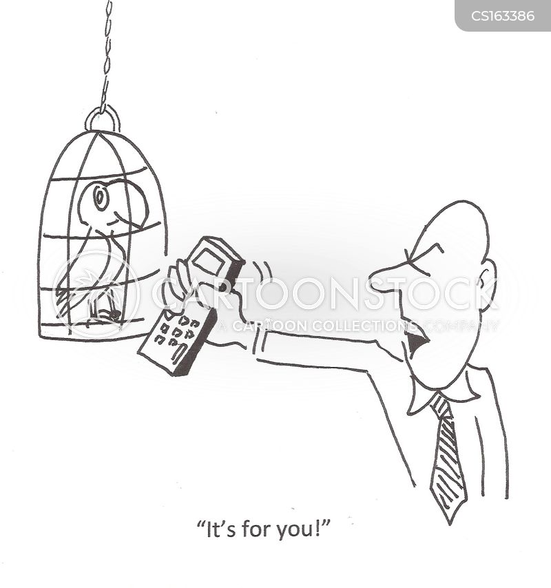 parrot owners cartoon