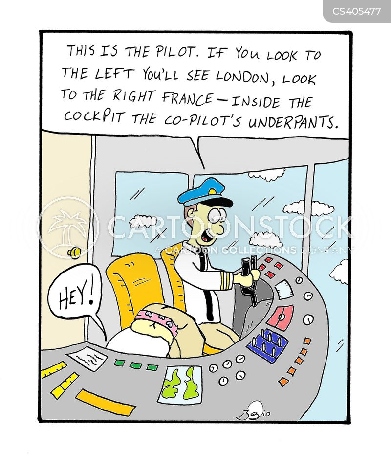 co-pilots cartoon