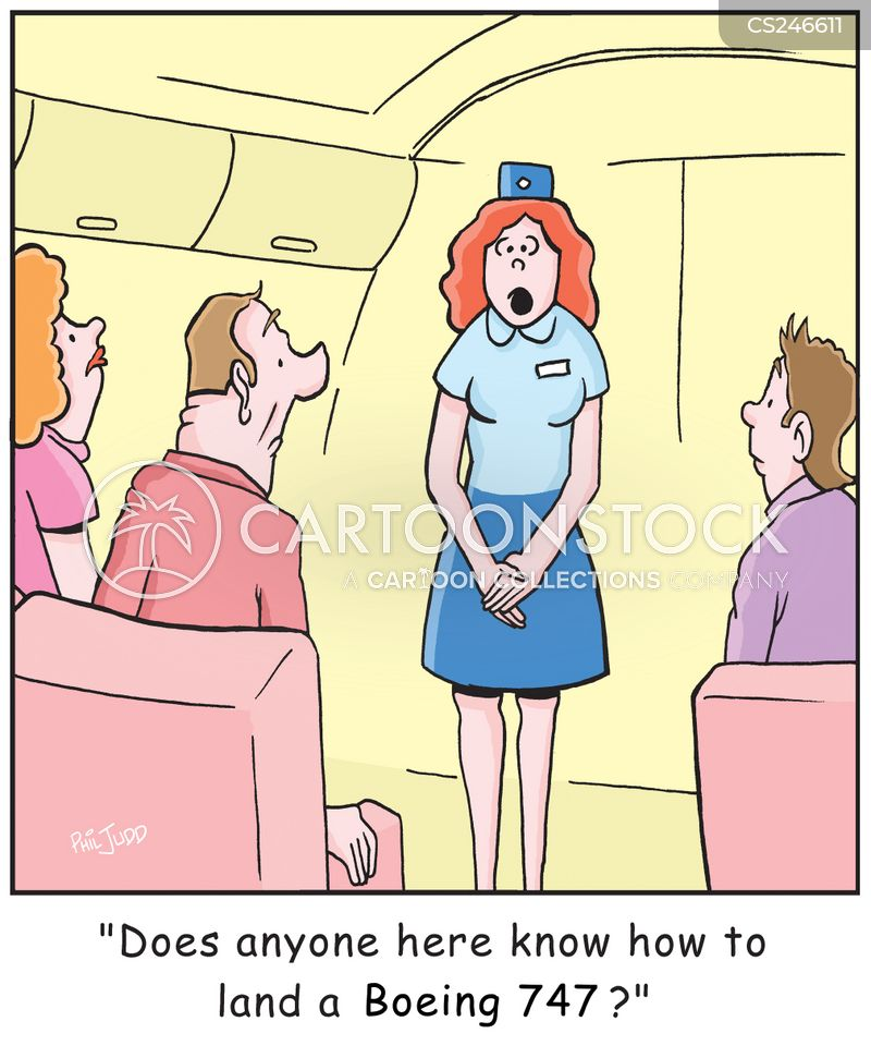 aviation disaster cartoon