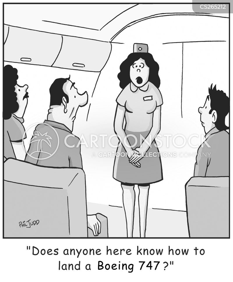 aviation disasters cartoon