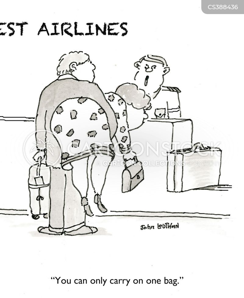 flight information cartoon