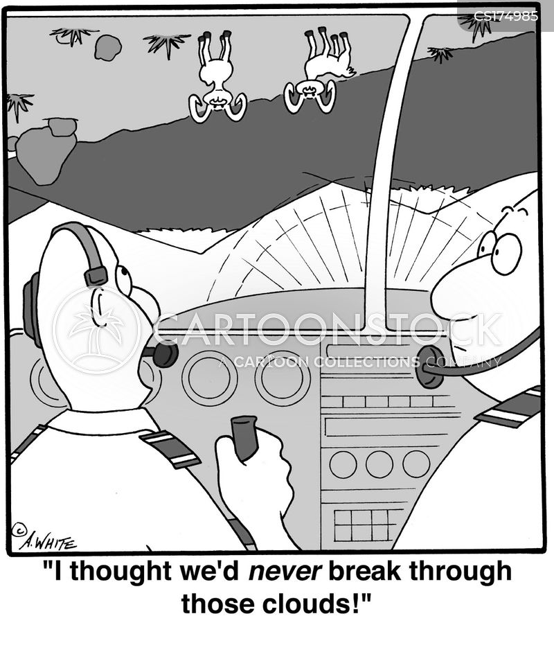 aviator cartoon