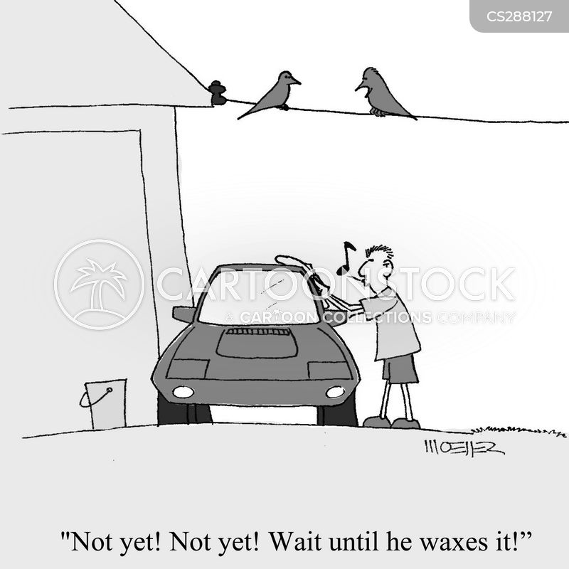 Car Waxes cartoons, Car Waxes cartoon, funny, Car Waxes picture, Car Waxes pictures, Car Waxes image, Car Waxes images, Car Waxes illustration, Car Waxes illustrations