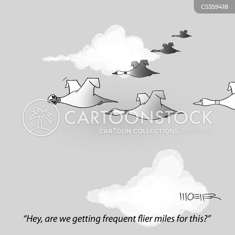fliers cartoon