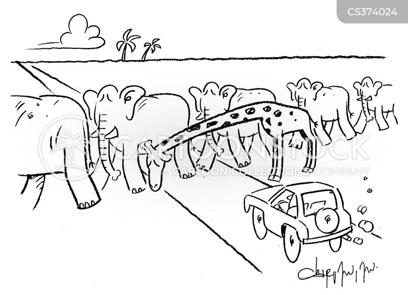 traffic crossings cartoon