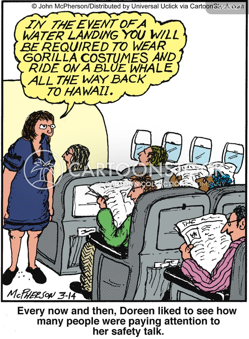 flight attendant cartoon