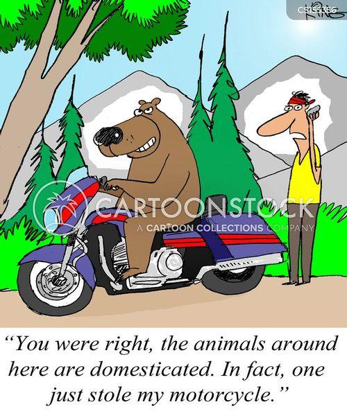 joy riding cartoon