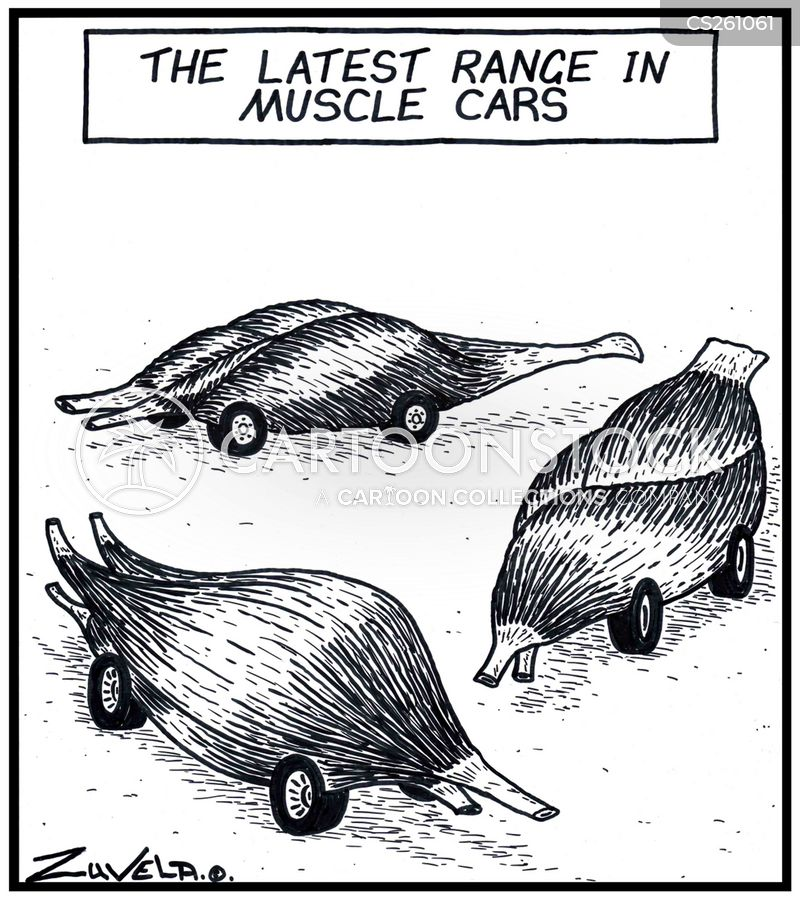 Muscle Car Cartoons And Comics Funny Pictures From Cartoonstock