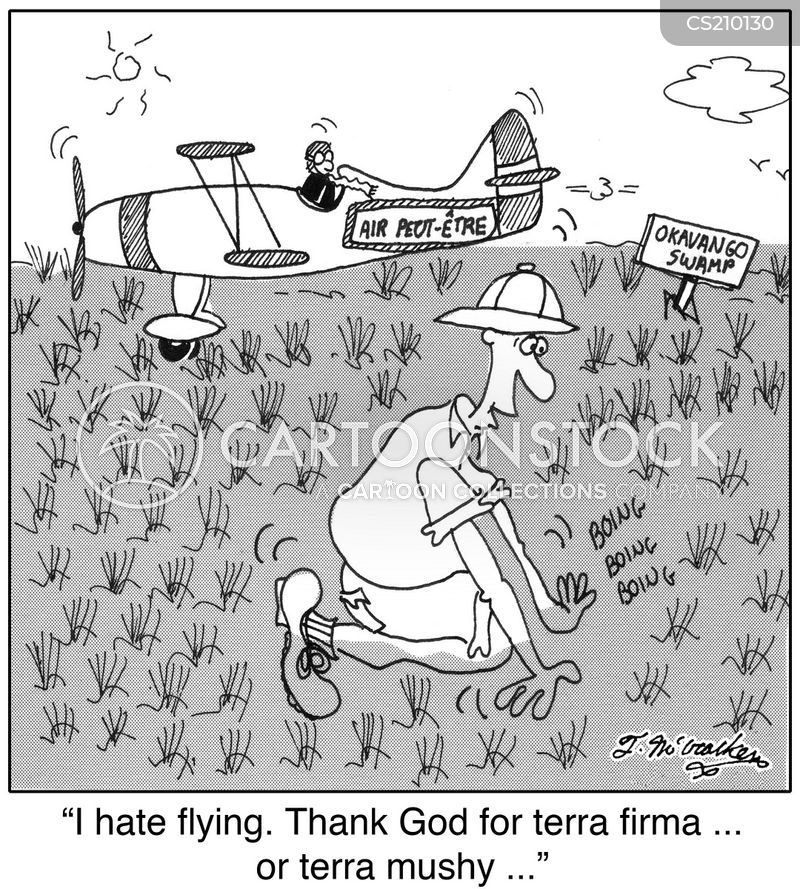 firm ground cartoon