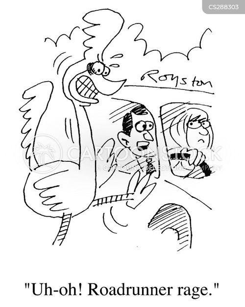 roadrunner cartoon