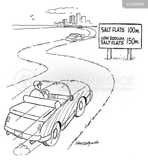 salt plain cartoon