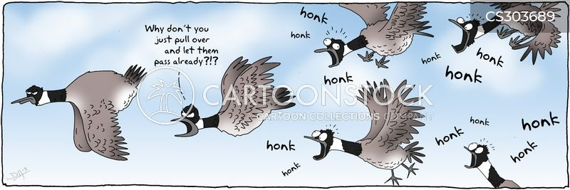 flying formations cartoon