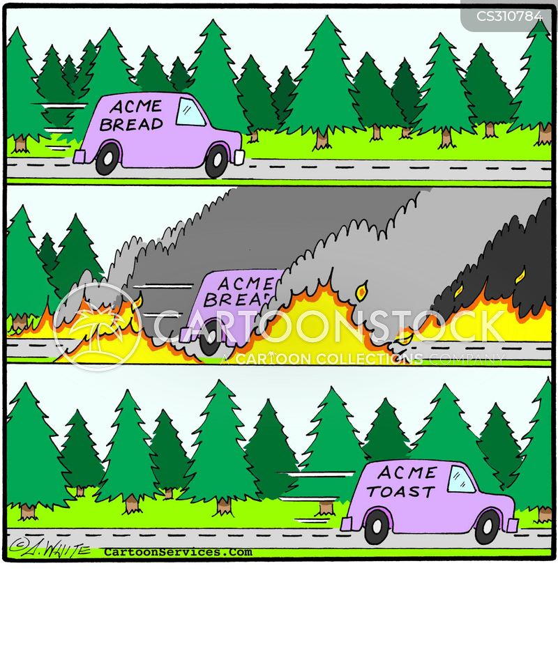 bush fires cartoon